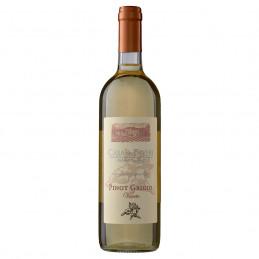 BIO вино розе Terre di...