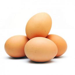 яйца Джиев размер М 6бр