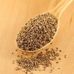 семена магданоз
