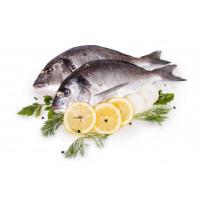 Риба и морски дарове
